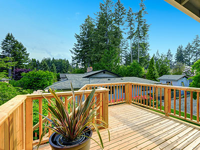 Pressure treated pine deck with wooden railing, green plant in a pot, wooden stairs, and tall trees and houses in the background.